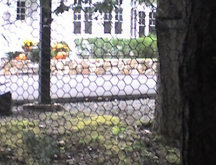 Critterfence-Steel-Deer-Fence-Garden-Fencing-Dog-Fence-6ft-X-150ft-Roll-0