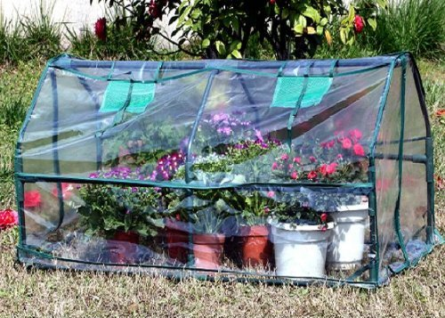 DELTA-Canopies-Green-Garden-Hot-House-Mini-Greenhouse-51-Wx24D-x20-H-GH004-Two-included-0