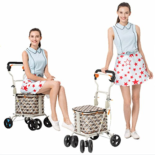 DGS-Shopping-Trolley4-Wheel-Trolley-With-Folding-Seat-Foldaway-For-Easy-StorageElderly-Shopping-Cart-0-1