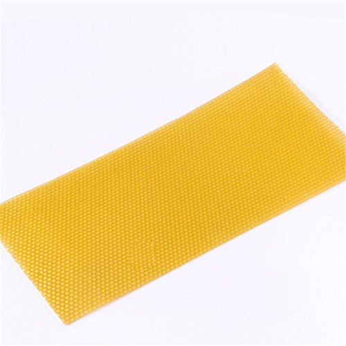 DSHINE-30Pcs-Honeycomb-Base-Bee-Leaf-Basic-Waxed-Natural-Rite-Cell-Foundation-0