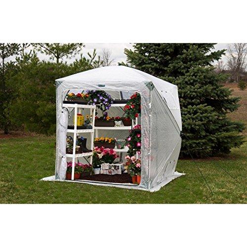 Flowerhouse-Orchid-Mini-Greenhouse-0-2