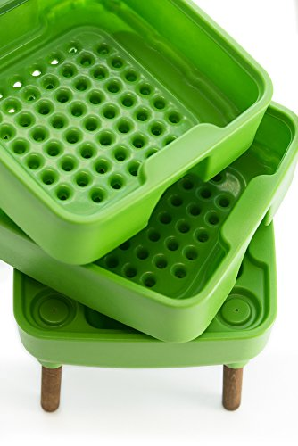 HOT-FROG-Living-Composter-Worm-Composter-0-1