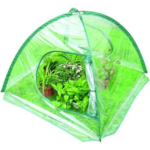 P3-Q1094-Folding-Greenhouse-0-0