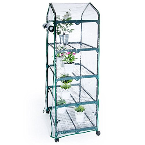 PierSurplus-23-ft-W-x-525-ft-H-4-Tier-Greenhouse-with-Transparent-PVC-Cover-and-Caster-Wheels-Product-SKU-GH070416-0-0