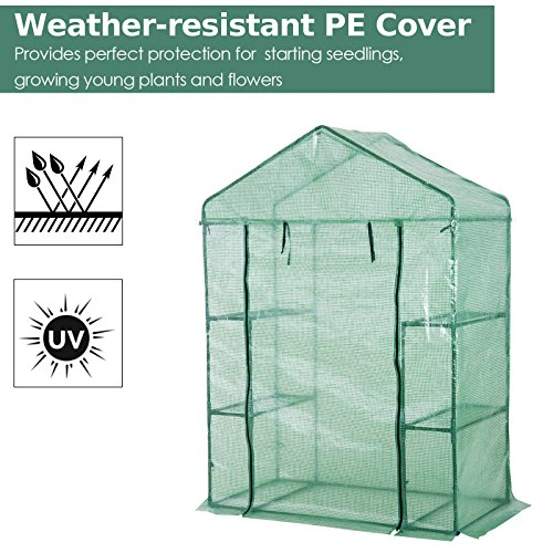 Portable-Greenhouse-Walk-In-Green-House-Outdoor-Year-Around-Plant-Gardening-56-x-30-x-78-0-1