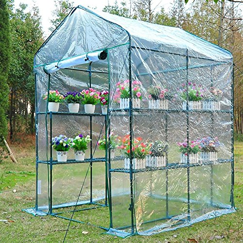 Portable-Walk-In-Greenhouse-5-x-5-x-6-Flower-Shelves-Outdoor-Garden-Plant-With-Ebook-0-0