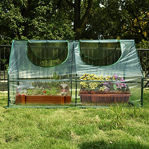 Quictent-71-WX-36-D-X-36-H-Portable-Cloche-Greenhouse-Mini-Green-Hot-Garden-House-0-0