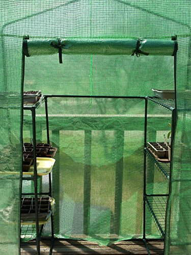Quictent-Mini-Walk-in-Greenhouse-4-tiers-6-Shelves-Portable-Small-Green-Grow-Garden-plant-Plastic-House-56-Lx30-Wx78-H-0-0