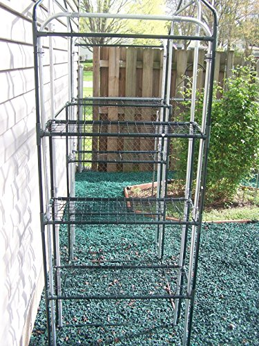 Quictent-Mini-Walk-in-Greenhouse-4-tiers-6-Shelves-Portable-Small-Green-Grow-Garden-plant-Plastic-House-56-Lx30-Wx78-H-0-2