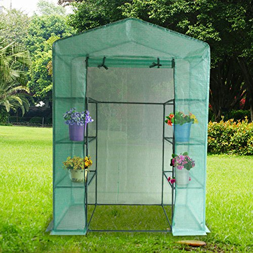 Quictent-Mini-Walk-in-Greenhouse-4-tiers-6-Shelves-Portable-Small-Green-Grow-Garden-plant-Plastic-House-56-Lx30-Wx78-H-0
