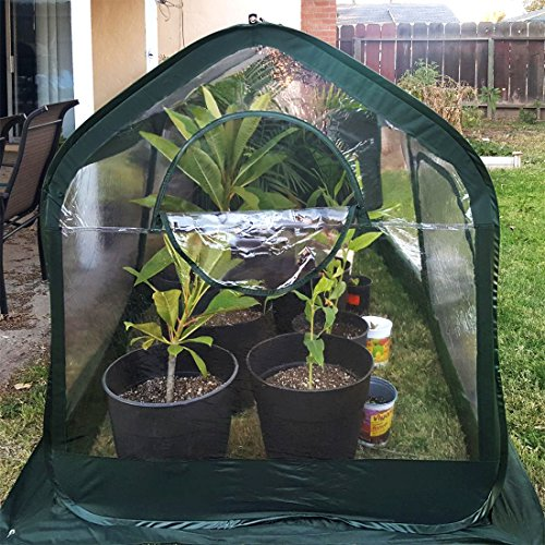 Quictent-Pop-up-Greenhouse-Fiberglass-Poles-Updated-Extra-Thick-Cover-Outdoor-Garden-Flower-Mini-Green-House-4-Doors-2-Vents-98x49x53-Green-0-1