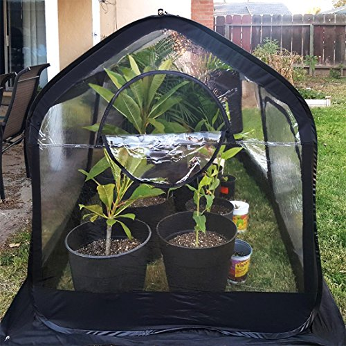 Quictent-Pop-up-Greenhouse-Passed-SGS-Test-Eco-Friendly-Fiberglass-Poles-Overlong-Cover-Six-Stakes-98x49x53-Mini-Portable-Green-House-0-2