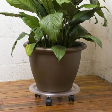 Rolling-Caddy-Indoor-Plant-Outdoor-11-in-Clear-0-0