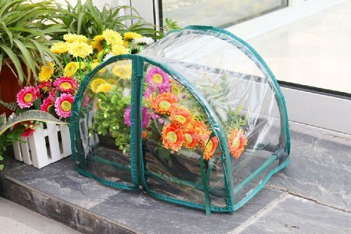 Zenport-SH3270-125-1-Foot-High-Balcony-Greenhouse-for-Protected-Patio-Mini-by-Zenport-0