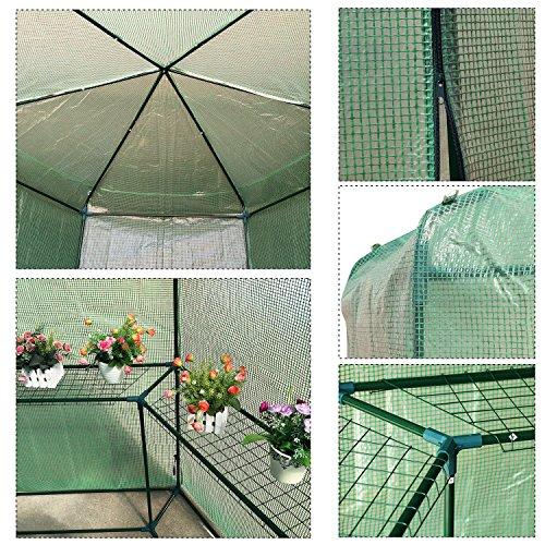 totoshop-New-65-x-7-Walk-in-Hexagonal-Greenhouse-PE-Grid-Hot-Plant-Gardening-House-10-0-1