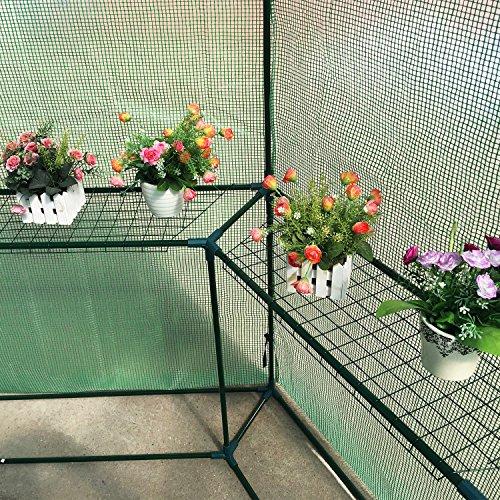totoshop-New-65-x-7-Walk-in-Hexagonal-Greenhouse-PE-Grid-Hot-Plant-Gardening-House-10-0-2