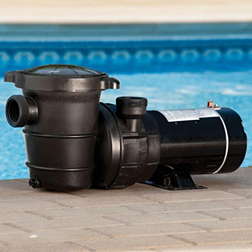 1-HP-Self-Priming-Above-Ground-Swimming-Pool-and-Spa-Pump-0