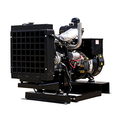 20KW-Winco-Liq-Cool-Diesel-Single-Phase-FPT-Ind-Generator-No-Fuel-Tank-DE20I4-032-8201000-032-0-1