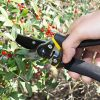 Bastex-Professional-Bypass-Pruning-Shears-Heavy-Duty-Garden-Pruner-For-TreesShrubsHedges-and-Roses-with-Cushioned-Handles-and-Safety-Lock-0-2