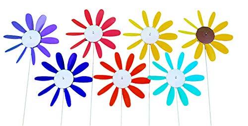 Beloit-Plastics-DAISY6M-Daisy-spinning-pack-of-6-0