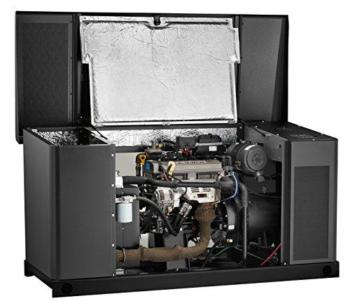 Briggs-Stratton-25kW-Standby-Generator-0-2