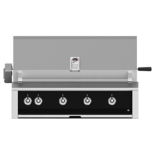 Hestan-Aspire-42-inch-Built-in-Natural-Gas-Grill-with-Sear-Burner-Rotisserie-Stealth-Embr42-ng-bk-0
