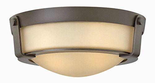 Hinkley-3223OB-GU24-Transitional-Two-Light-Flush-Mount-from-Hathaway-collection-in-BronzeDarkfinish-0