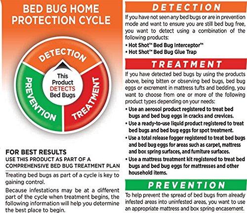 Hot-Shot-Bedbug-Flea-Fogger-32-Ounce-6-Pack-0-0