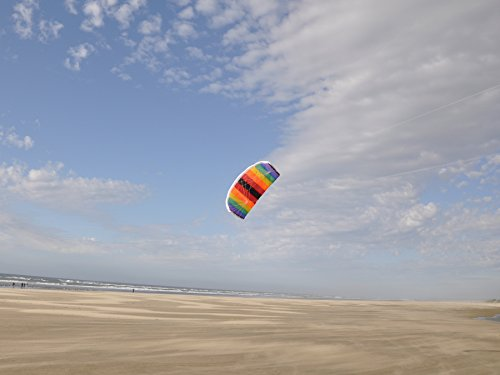 In-the-Breeze-Black-and-Rainbow-Power-Kite-2-Meter-0-0