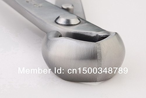 Knob-Cutter-Bonsai-Tools-Concave-Cutter-Round-Edge-Cutter-210-Mm-8-14-Stainless-Steel-From-TianBonsai-0