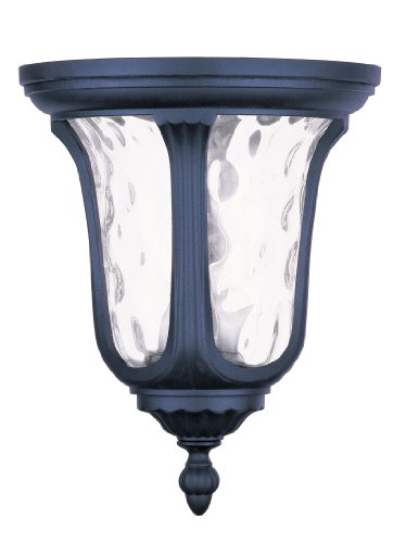 Livex-7861-04-Oxford-Outdoor-Ceiling-Mount-Black-Clear-Water-Glass-0