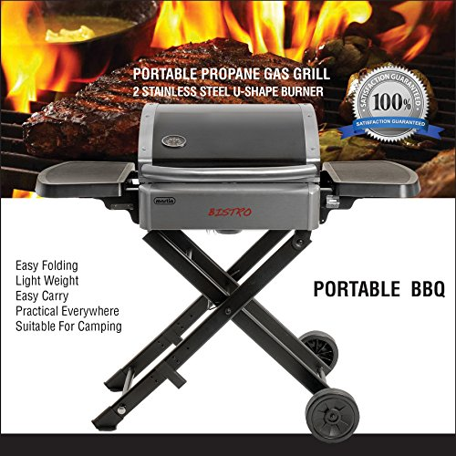 Martin-Bistro-Gas-Grill-Portable-Stainless-Steel-Tabletop-BBQ-Propane-Barbeque-Grills-for-Camping-Outdoor-0-0