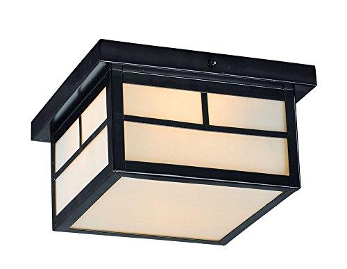 Maxim-Lighting-4059WTBK-Coldwater-Outdoor-Flush-Mount-Black-0
