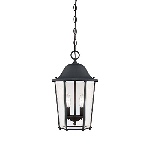 Outdoor-Pendant-2-Light-with-Black-Finish-Candelabra-Base-Bulbs-10-inch-80-Watts-0