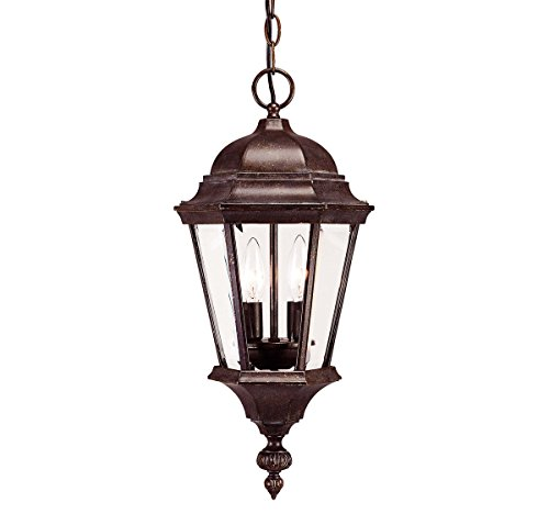 Outdoor-Pendant-2-Light-with-Walnut-Patina-Finish-Candelabra-Bulbs-9-inch-80-Watts-0