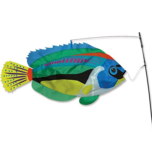 Premier-Kites-Swimming-Fish-Peacock-Wrasse-0
