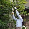 RYOBI-rechargeable-pruning-shears-BSH-120-import-JPN-0-2