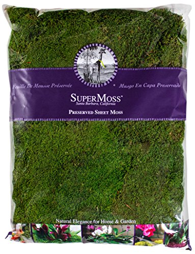 Super-Moss-21585-Preserved-Sheet-Moss-Fresh-Green-32-Ounce-0