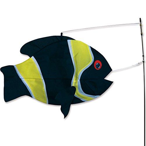Swimming-Fish-Damsel-Fish-0